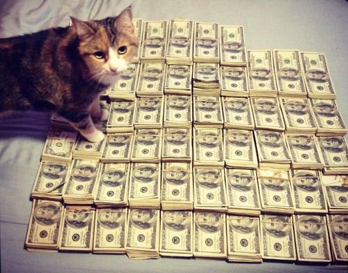 cashcats-2