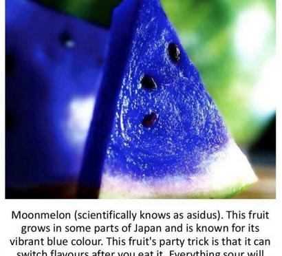 日本の真っ青なスイカ、ムーンメロン(ウソ)の写真が英語圏で評判
