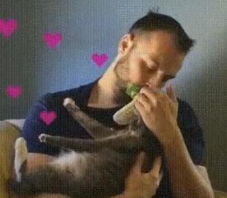 Licki Brush – 猫と舐め合うためのブラシ