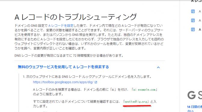 Googleのヘルプに書かれたサンプルドメインが失効、乗っ取られる